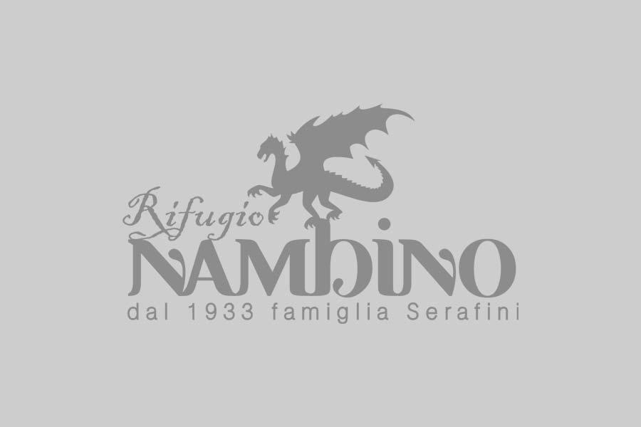 Rifugio Nambino | Rododendro